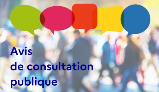 consultation publique.png