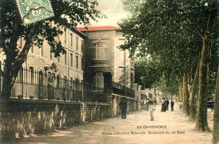 le-batiment-vu-du-boulevard-du-roi-rene-carte-postale.jpg