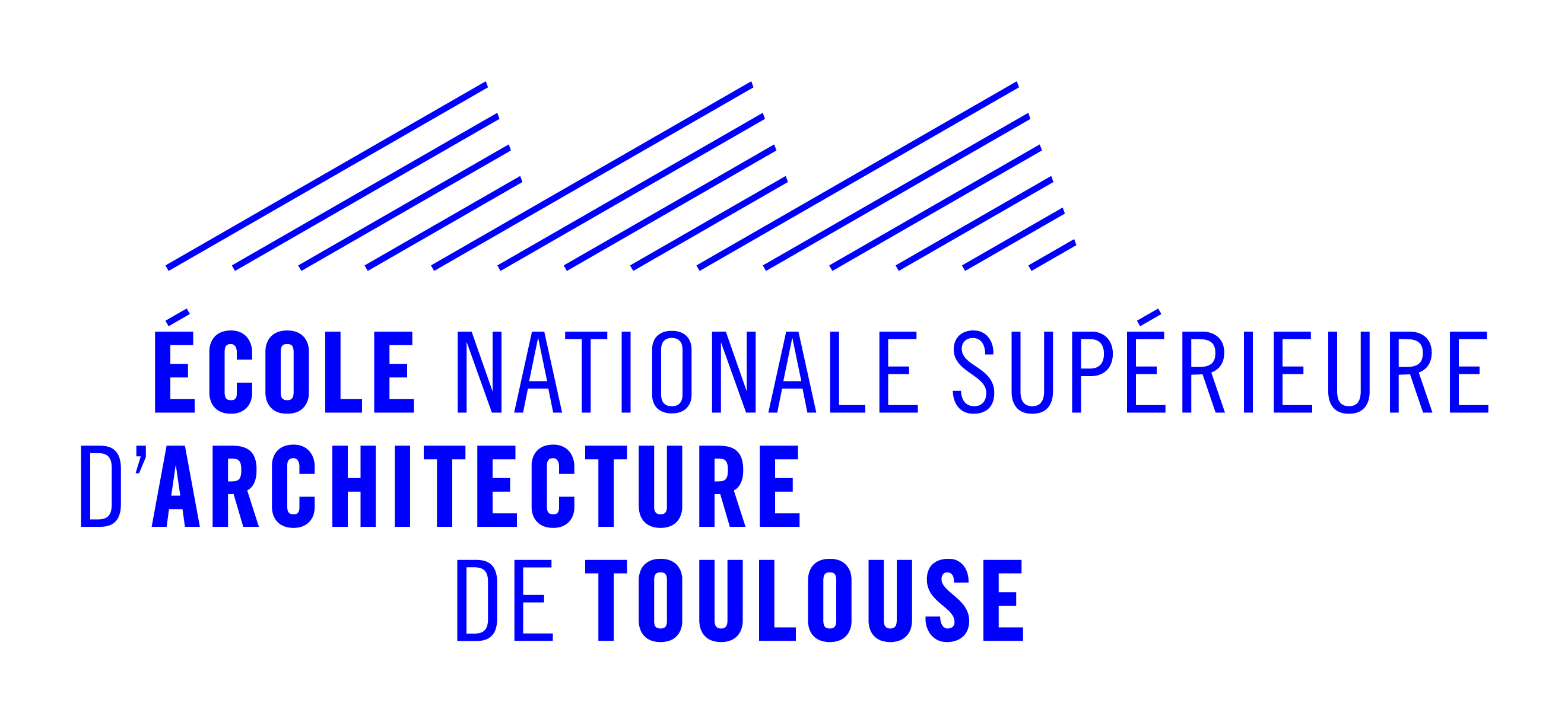 logo_ensa_toulouse.jpg