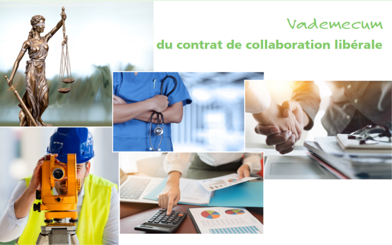 screenshot_2019-01-14_vademecum_contrat_de_collaboration_liberale_pdf.png