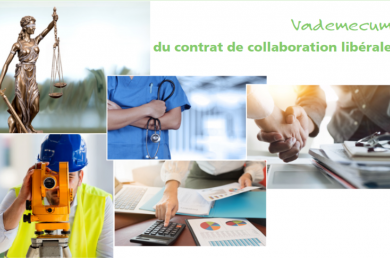 screenshot_2019-01-14_vademecum_contrat_de_collaboration_liberale_pdf.png