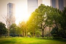 Nature en ville, parc urbain