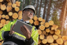 Journée construction Bois