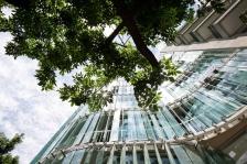 Architecturestudio, immeuble de bureaux à Buenos-Aires (Argentine) - Grand Prix AFEX 2020