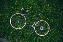 bicycle-in-the-garden_4460x4460.jpg