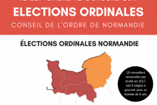 elections_ordinales_pastille.png