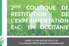 invitation-colloque-mtp-v5b-800.png