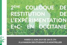 invitation-colloque-mtp-v5b-800.png