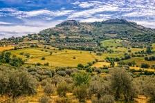 Paysage méditerranéen