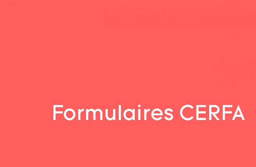 Permis de construire formulaires cerfa et dossier for Formulaire cerfa 13703